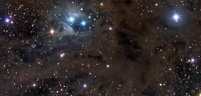 stardust in aries