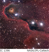 dark globule in IC 1396