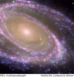 m81 multiwavelength