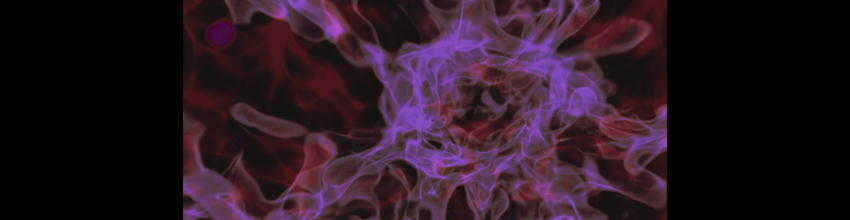 dark matter filaments simulation
